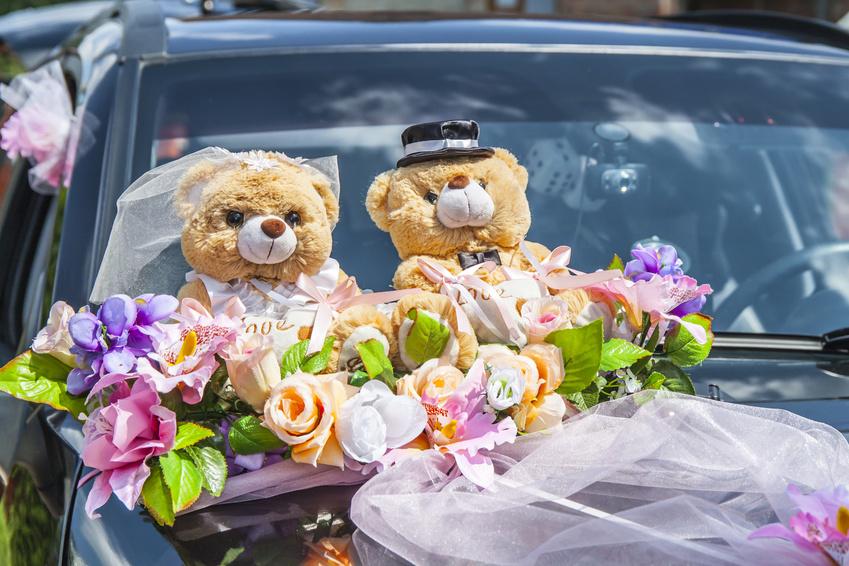 Свадебные мишки - украшение свадебного кортежа